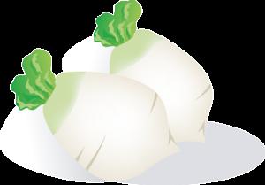 カンタン酢作り方レシピ大根