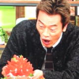 遠藤憲一痩せすぎ病気若い頃現在画像