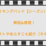 ブレイキングバッド【シーズン1・7話】解説&感想!キャストやあらすじも紹介(ネタバレ)